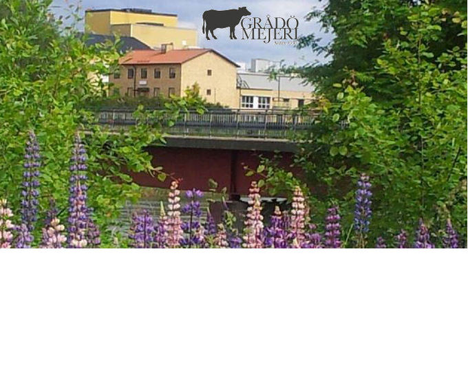 Grådö Mejeri en del av Falköpings Mejeri